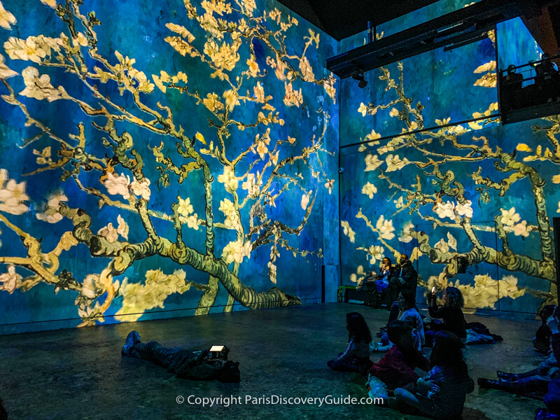Atelier des Lumieres show on Van Gogh - Paris