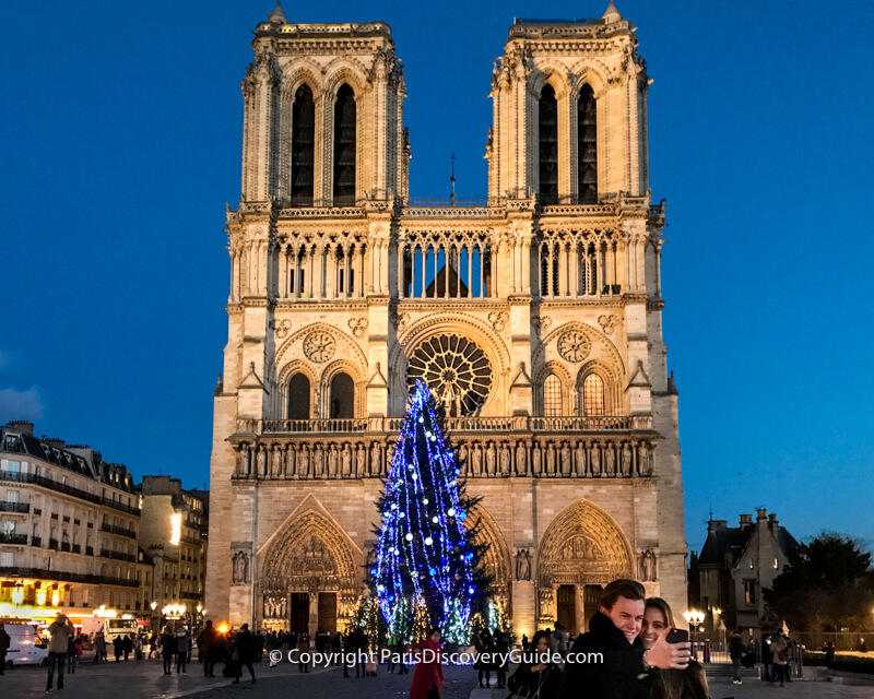 Notre Dame's Christmas Tree