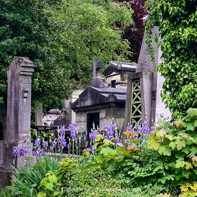 Pere Lachaise Cemetery in June