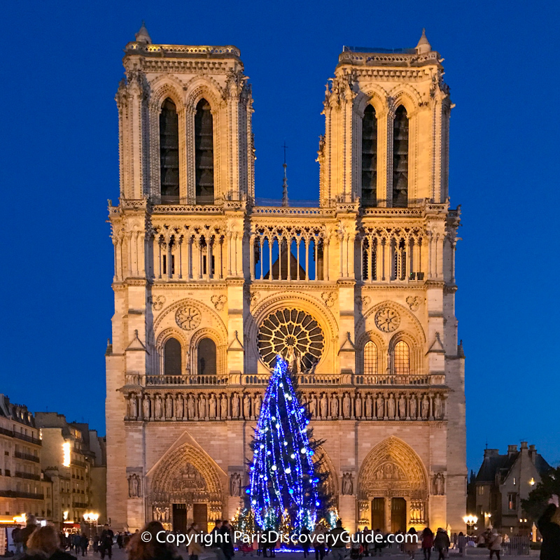 Giant Christmas tree in front of Notre Dame Cathedral