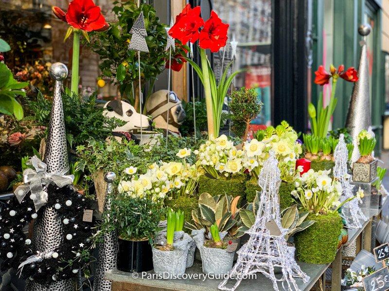 Christmas flowersin front of a flower shop on Rue du Bac in Saint-Germain