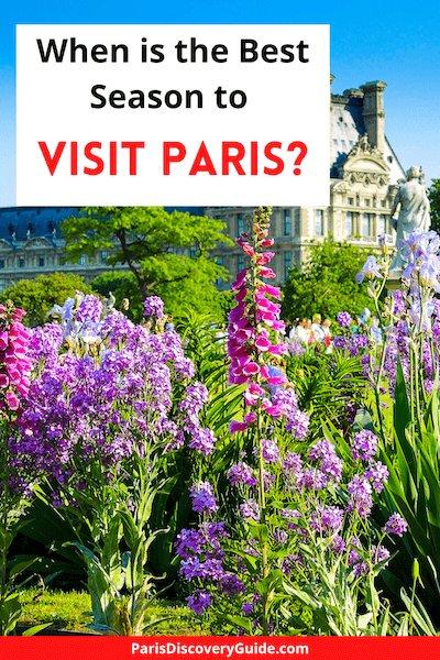 Summer flowers in Tuileries Garden near the Louvre in Paris